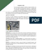 Exposicion de fundamemento (1).docx