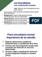 Tema 43 Microbiota Humana