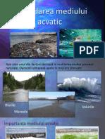 degradarea mediului acvatic