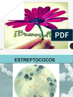 micro.pptx