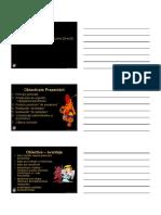 092_CURS-SCRIS-10-protezarea-provizorie.pdf