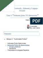 Tema5 Automatas No Deterministas1