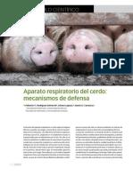 Aparato Respiratorio Del Cerdo