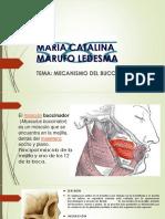 Maria Catalina Marufo Ledesma
