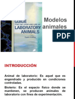 Modelos Animales
