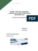 Atestat 2018- Contabilitatea Creditelor Bancare Pe Termen Lung
