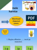 Albinele Ortogramele I-A I-Au