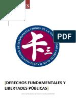 Introduccion Derechos Fundamentales Resumen
