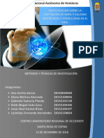 Informe de Proyecto de Metodos y Tecnicas de Investigacion