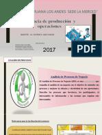 Tema 5 Analisis de Procesos