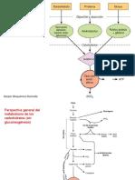Interrelaciones.pdf