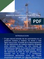 OPERACIONES UNITARIAS Deshidratacion Del Gas Cespedez