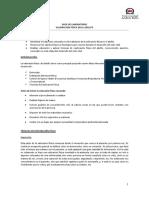Guía de Laboratoria Valoración Física del Adulto EFER 203 UNAB 2017