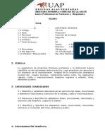 anatomia.pdf