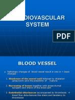 Patol-sistkardiovaskular