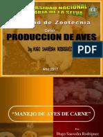 Pollos Hugo (1)
