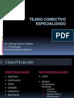 CONECTIVO ESPECIALIZADO