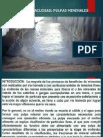 Pm i 3o Suspensiones Acuosas -1