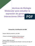Expresion 2012 Com 1.PDF Genetica