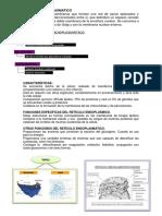 Escrito Biologia Celular