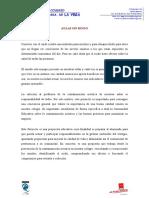 proyecto-aulas-sin-ruido.pdf