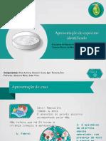 Relatório de bacteriologia