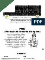PPT PMK