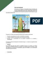 OBTENCION-BIOETANOL.docx