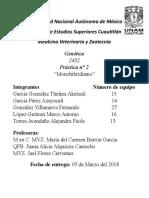 Genética 2° Reporte Monohibridismo