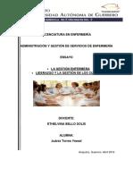 La Gestión Enfermera.Liderazgo y la gestión de cuidados.  Yeesel Juárez Torres, Ensayo