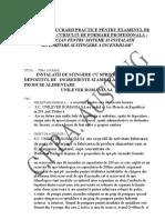 Tematica Lucrare Practica-unilever