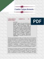Juan Camilo Cajigas Rotundo