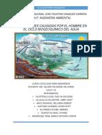 CICLO-DEL-AGUA.2DA-VEZ.docx..jimmy.docx