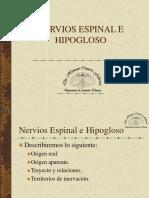 NERVIOSESPINAL E HIPOGLOSO