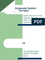 Cardiovascular System the Heart Part 2