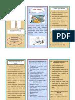 Leaflet Fraktur Fix