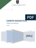 Campo Magnético Tia Moni