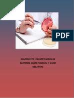 5to Informe de Laboratorio de Microbiologia