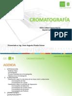 Cromatografía Exposicion