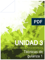 unidad3DescGuianza