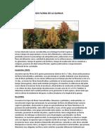 Biologia Floral Quinua