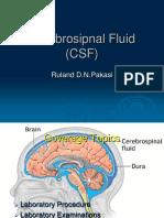 LabTest Neuropsi 26 Feb2010 - dr. Ruland.pptx