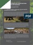 Saída de Campo Intervenção No Parque Natural Do Vale Do Guadiana 2018
