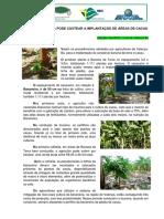 BANANA_DA_TERRA_PODE_CUSTEAR_A_IMPLANTAÇÃO_DE_ÁREAS_DE_CACAU_01.09.2017[1]