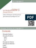Alocacaodinamica 150713215118 Lva1 App6891