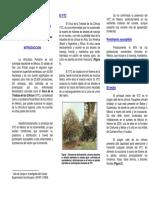 Folleto-El Virus de La Tristeza de Los Cítricos de La Huasteca Potosina