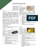 Mineria No Metalica en El Peru