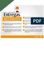 ENTREGAS (1).docx