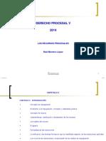 Derecho Procesal v 2014 (1)