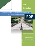 Resumen Ejecutivo - Estudio de Impacto Ambiental